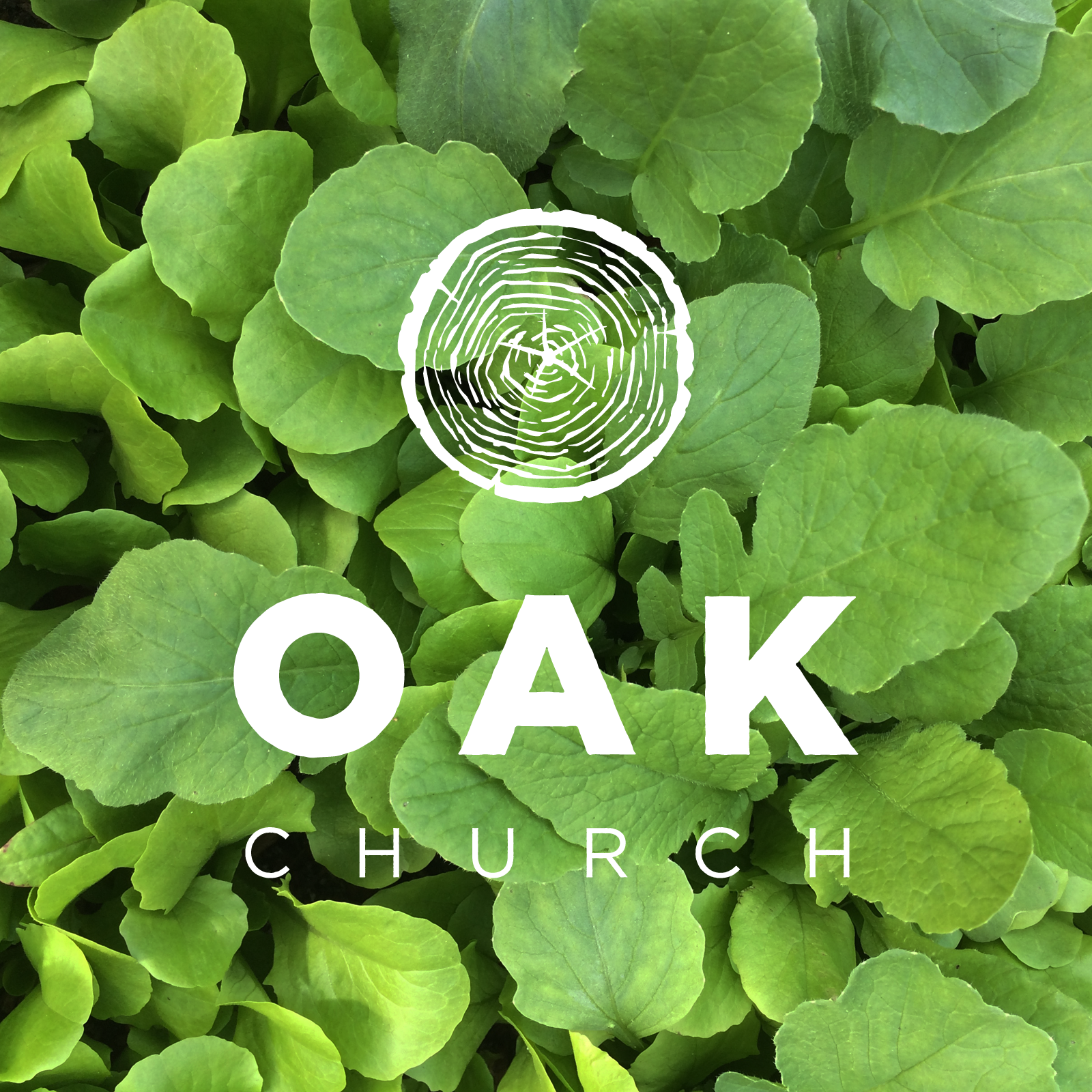 Oak Church